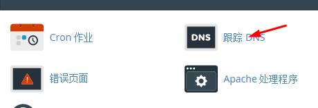跟踪DNS